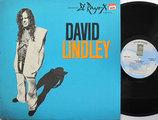 DAVID LINDLEY - El Rayo-x Single